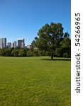 sheep meadow  central park  new ... | Shutterstock . vector #54266965