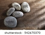 pebbles or stone with... | Shutterstock . vector #542670370