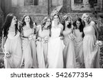 beautiful bride with her pretty ... | Shutterstock . vector #542677354