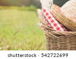 outdoor picnic at the summer... | Shutterstock . vector #542722699