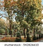 autumn in the city park | Shutterstock . vector #542826610