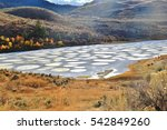Spotted lake in Okanagan Vallye, Osoyoos, British Columbia.  It contains dense deposits of magnesium sulfate, calcium and sodium sulfates. Spotted Lake was for centuries and remains revered as sacred