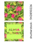 tropical wallpaper with exotic... | Shutterstock .eps vector #542850226