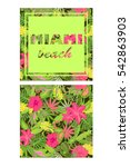 tropical colorful wallpaper... | Shutterstock .eps vector #542863903