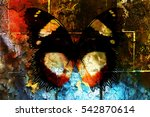 Butterfly On Crackled Wall...