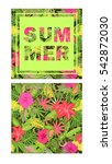 tropical wallpaper with exotic... | Shutterstock .eps vector #542872030
