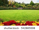 picturesque ornamental park... | Shutterstock . vector #542885008