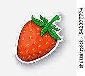 vector illustration. fruit... | Shutterstock .eps vector #542897794