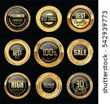 luxury golden retro badges... | Shutterstock .eps vector #542939773