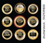 luxury golden retro badges... | Shutterstock .eps vector #542939800