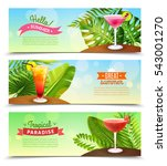 tropical paradise summer... | Shutterstock . vector #543001270