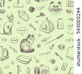 cats and products for cats.... | Shutterstock .eps vector #543003244