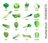 green vegetables flat icons... | Shutterstock . vector #543036073