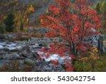 mountain stream long exposure... | Shutterstock . vector #543042754