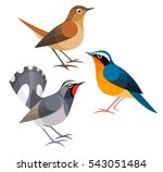 Stylized Birds   Nightingales