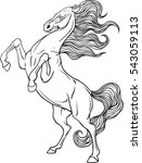 coloring page with horse | Shutterstock .eps vector #543059113