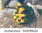 Yellow Tulips And Purple...