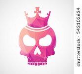 skull logo type icon in... | Shutterstock .eps vector #543102634