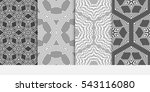 set of floral geometric... | Shutterstock .eps vector #543116080