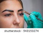 beautician  makeup artist... | Shutterstock . vector #543153274