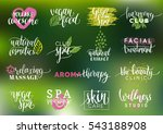 vector health and beauty care... | Shutterstock .eps vector #543188908