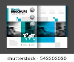 abstract business brochure... | Shutterstock .eps vector #543202030