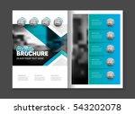 abstract business brochure... | Shutterstock .eps vector #543202078