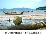 fresh coconut on background of... | Shutterstock . vector #543235864