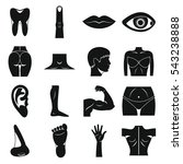 body parts icons set. simple...   Shutterstock .eps vector #543238888