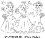 vector black and white brides... | Shutterstock .eps vector #543240328