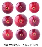 isolated cranberries.... | Shutterstock . vector #543241834