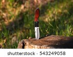 knife in a stump   Shutterstock . vector #543249058