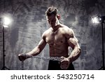 the perfect male body. awesome... | Shutterstock . vector #543250714