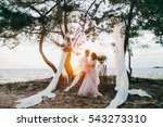 elegant bride and groom at the... | Shutterstock . vector #543273310