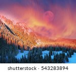 Stock photo after the storm a strong frost frosted alpine peaks of the carpathians the bright colors of the 543283894