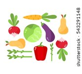 vegetables food cellulose... | Shutterstock .eps vector #543291148