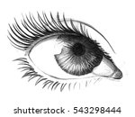 pencil sketch of an eye | Shutterstock . vector #543298444