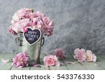 pink carnation flowers in zinc...   Shutterstock . vector #543376330