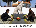 "Small photo of JIANGXI CHINA-Mar31, 2012:people to visit Todd tomb, 9 years ago, Todd ""tiger"" dead meat saved toxic warning, more than 30 people's lives. Later people will be thick burial, stone sculpture memorial."