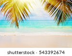 tropical island. the seychelles.... | Shutterstock . vector #543392674