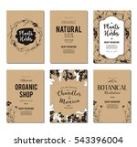 plants and herbs banners set | Shutterstock .eps vector #543396004