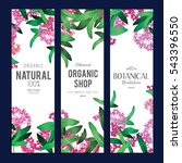 plants and herbs banners set | Shutterstock .eps vector #543396550