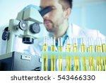 doctor examining the urine in...   Shutterstock . vector #543466330