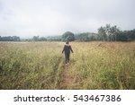 girl enjoying nature on the... | Shutterstock . vector #543467386