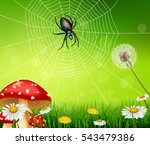 cartoon spider with nature... | Shutterstock .eps vector #543479386