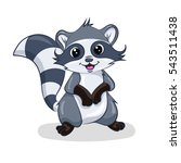 grey stripes cartoon raccoon at ... | Shutterstock .eps vector #543511438