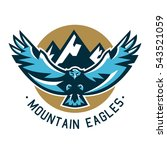 logo eagle. hawk flying in the... | Shutterstock .eps vector #543521059