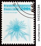 "Small photo of TOGO - CIRCA 1999: A stamp printed in Togo from the ""Flowers "" issue shows Arctotis breviscapa, circa 1999."