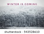 winter is coming text with... | Shutterstock . vector #543528610
