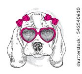 cute puppy with glasses heart.... | Shutterstock .eps vector #543540610